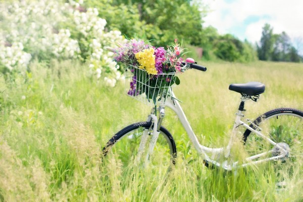 Fahrradtour-Hamburg